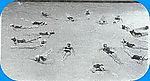 O-3 Synchonized Swimming 1949