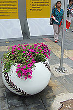 O-5 softball with flowers