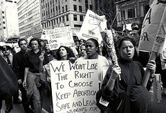 Palin choice demonstration 1991