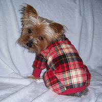 Pajama doggie2