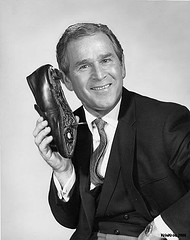 Bush and shoe