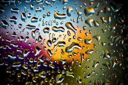 Bus wet window