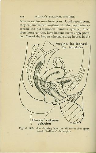 Labia women organs drawing