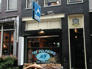 Amsterdam The Dolphins