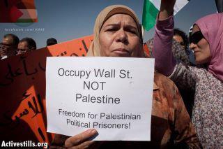 Occupy wall street not palestine