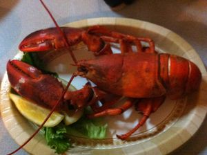 ME lobster paper plate