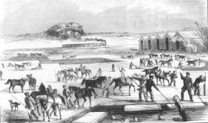 Spy_Pond_Ice_Harvesting_from_a_1854_print