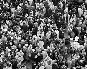 Kd vintage crowd women