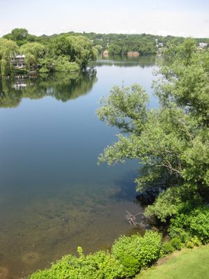Spy pond water