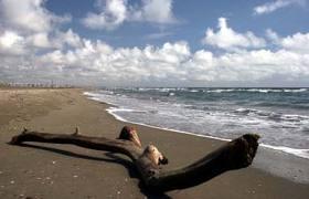 Pietra santa beach