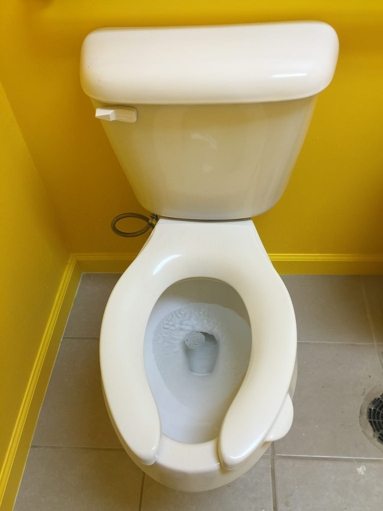 Toilet seat with handle