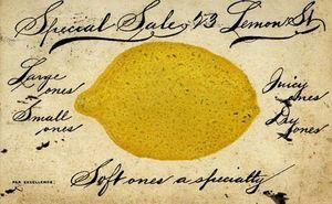Lemon vintage