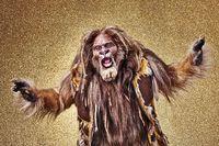 Wiz lion