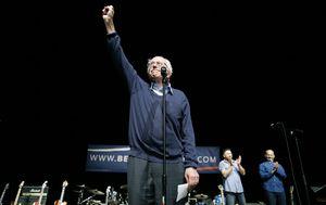 Bernie fist