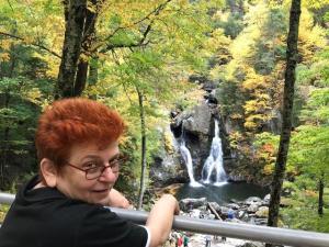 Bershires overlooking Falls