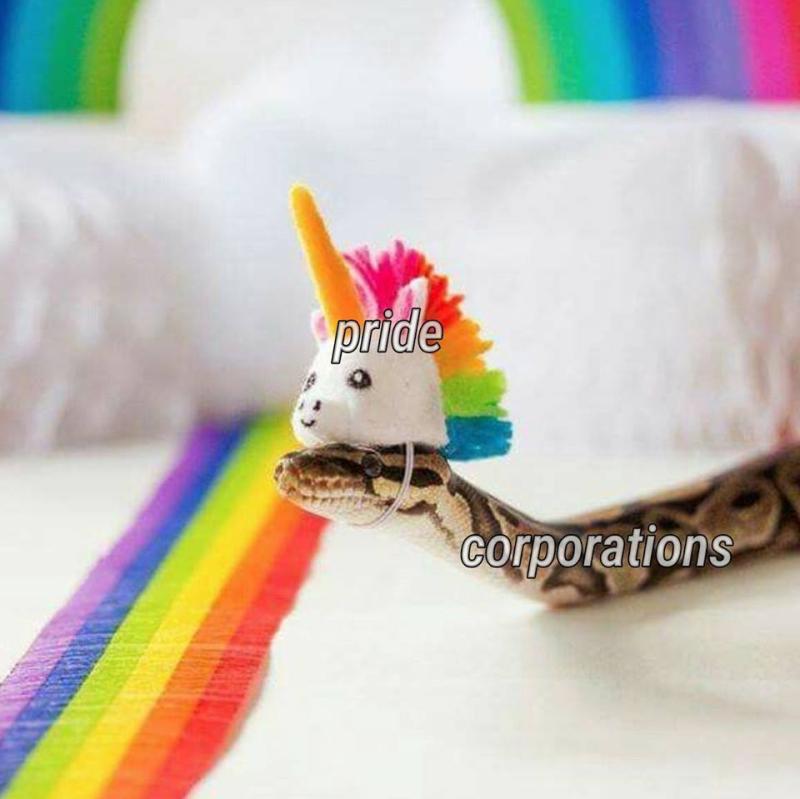 Pride corporations