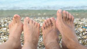 Feet 2 pairs