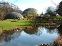 Zurich_botanical_gardens