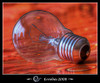 Pprincipal_light_bulb_3