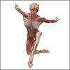 Body_world_kneeling_lady_1